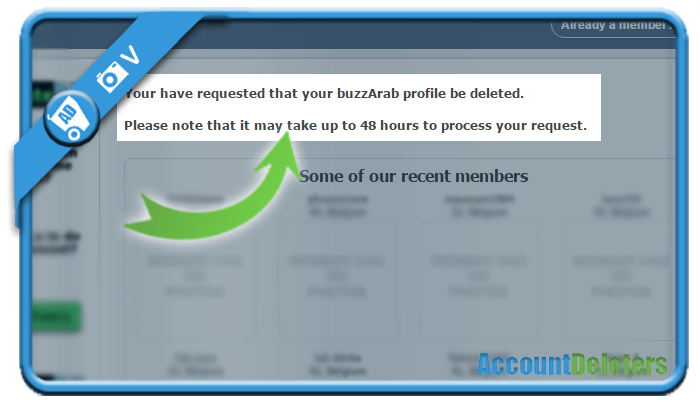 delete buzzarab account 5